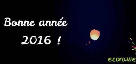 2016_bonne année